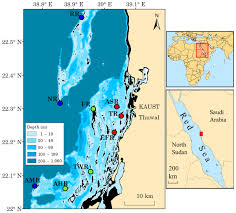 Map Of The Red Sea Spatial Variation In Coral Reef Fish And Benthic Communities In