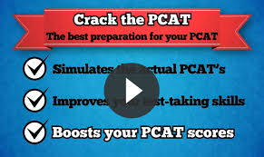 Pcat essay help Mba admission help College Essays Application Pcat Essay Example Of Book Review Free Essays and     FAMU Online
