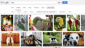 Google Advanced Image Search for pets