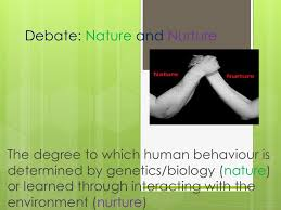 Destruction of Nature by Humans   Essay mother nature essay compucenter copopulation essay does mother earth have  the capacity to sustain document image