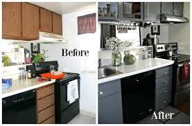 Kitchen Cabinet Inside Designs by Fresh Condo Kitchen Cabinets Interior Decorating Ideas Best Best
