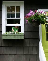 window herb garden window herb garden indoor windowsill herb