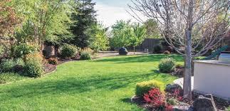 may 2017 u2013 making the most of your yard u2013 part iii executive