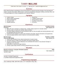 Java Resumes Well Suited It Resume Sample 13 It Cv Template Library Technology