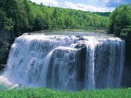cascade trop top