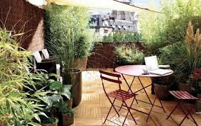 Rooftop Garden Ideas How To Improve Privacy Of Rooftop Garden Rooftop Garden Ideas