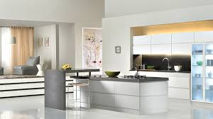 fine modern kitchens 2015 minimalist kitchen design and style