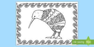 kiwi mindfulness colouring english zealand