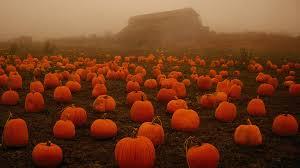 let u0027s get spooky halloween music album on imgur