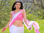 Kajal Agarwal Wallpapers | HD Wallpapers
