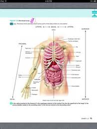 Anatomy And Physiology Chapter 1 Review Answers Principles Of Anatomy And Physiology Chapter 15 The Autonomic