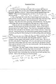 Informative Speech Essay Examples Essay Typer Will Write Papers For You Business Insider How To