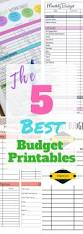 Sample Home Budget Spreadsheet The 25 Best Monthly Budget Template Ideas On Pinterest Family