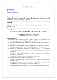 resumes format for freshers professional resume format download mba mba resume format doc download example good resume template resume format for freshers mba hr free