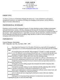 Example Resume  Professional Summary And Experience For Examples Of Resumes Objectives  Examples Of Resumes     Binuatan