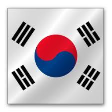 S. Korea Flag