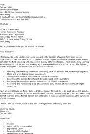 Sample Veterinary Resume VisualCV Sample Resume  Sle Resume Basic Veterinary Receptionist Page