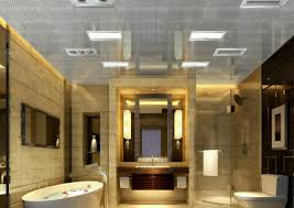 ceiling bathroom ceiling tiles entertain bathroom ceiling pvc
