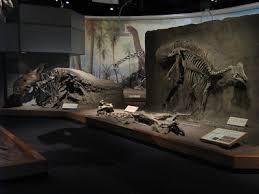 The Tyrannosaur Chronicles  the royal tyrrell museum The Tyrannosaur Chronicles