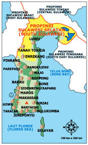 agen xamthone sulawesi selatan