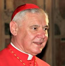Cardinal Müller: LCWR Stands in 'Open Provocation' of Holy See | Daily News | NCRegister.com - CardinalMuller-255x261