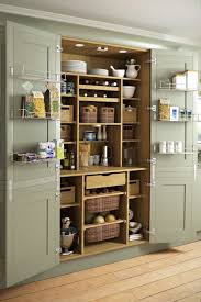 Kitchen Pantry Shelving Ideas by 51 Pictures Of Kitchen Pantry Designs U0026 Ideas Kitchen Pantries