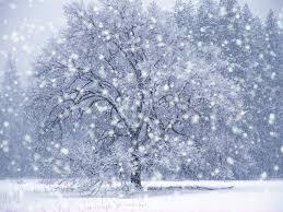 Zimski ugođaj :) Images?q=tbn:ANd9GcR5U1mSMYFvzYTOZlG3YJ9-Ab54xPWkDX2YcbEgvuwb9_NGnvVA