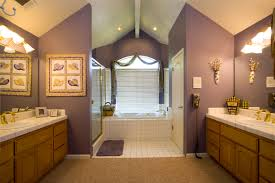 Bathroom Paint Color Ideas Paint Colors For Bathrooms Ideas Design Ideas U0026 Decors