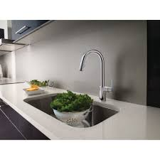 how to pick out moen kitchen faucet rafael home biz