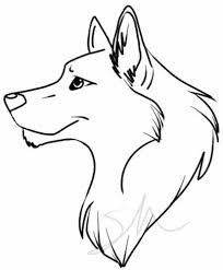 wolf drawing best images collections hd for gadget windows mac