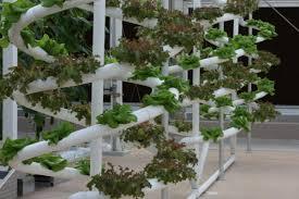 powerhouse hydroponics