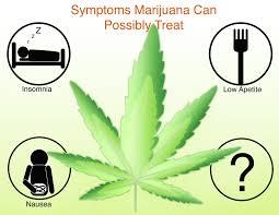medical marijuana policy in the united states hopes huntington u0027s