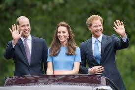 prince william prince harry say they didn u0027t talk about princess