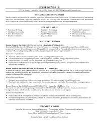 Senior Hr Manager Resume Sample by Hr Resume Examples Hr Assistant Cv Template Job Description