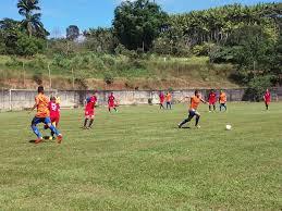 Sport- ES faz primeiro jogo no Capixabão contra a equipe do Linhares