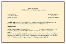Executive Summary Resume Example Template Objective Statements For A Resume Best Free Resume Collection