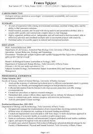 My Cv Resume  creative resumes and cvs samples  write my resume     happytom co