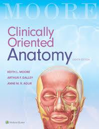Human Anatomy And Physiology Marieb 9th Edition Quizzes University Bookshop Ltd New Zealand