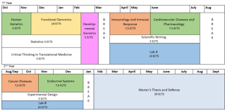International Master  s Program Molecular Medicine    Charit       It also reflects the duration of the two different lab rotations students participate in before they select their master     s thesis lab