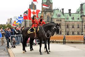 thanksgiving horse pictures why you should celebrate canadian thanksgiving instead of columbus