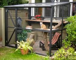Blueprints To Build A House by Best 25 Cat House Plans Ideas Only On Pinterest Cat Tree House