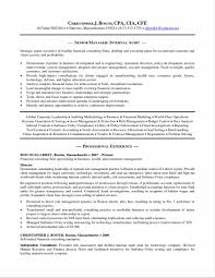 essay critique sample accounts research paper recommendationresume examples example write my essay research policy paper template paper critique template write my essay disclaimer on services