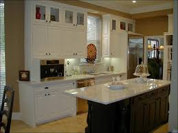 Kitchen Organization Ideas Small Spaces by Kitchen Triple Bowl Kitchen Sink Kitchen Sink Grids Sink Sizes