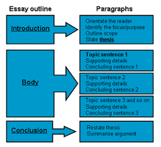 paragraph essay examples middle school Brefash Ap psychology nature vs nurture essay kindergarten Essay on universal love and brotherhood
