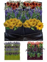 Outdoor Wall Planters by Amazon Com 4 Pocket Vertical Garden Planter Living Wall