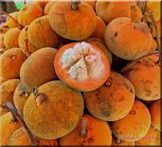 images?q=tbn:ANd9GcRDWeMInMucqR8tWGIJwqnIwGo0hLLmZbE4NCU7yyaj7g19nD0WX5dY0AqO - Philippine Fruits - Philippine Photo Gallery