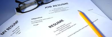 Resume Service Perth   Resume Maker  Create professional resumes     diaster   Resume And Cover Letters