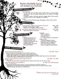 Best Resume Examples Professional by Amazing Creative Resume Examples