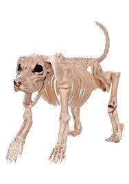 Life Size Skeleton Halloween by Beagle Bonez 20