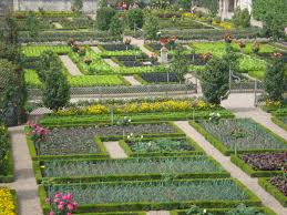 garden of vegetable parterres chateau de villandry france
